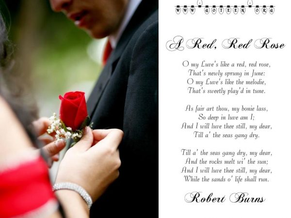 Robert Burns – A Red, Red Rose